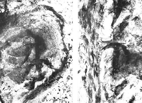 pinturas-rupestres-hoyo-pela