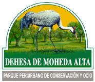 moheda-alta