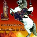 La Encamisá 2002