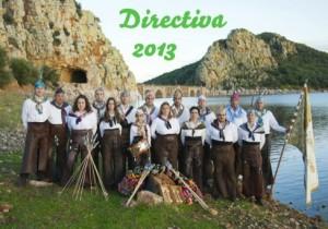 DIRECTIVA 2013